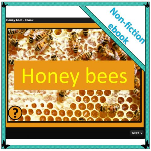 Honey bees – ebook