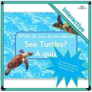 interactive quiz about sea turtles and living things