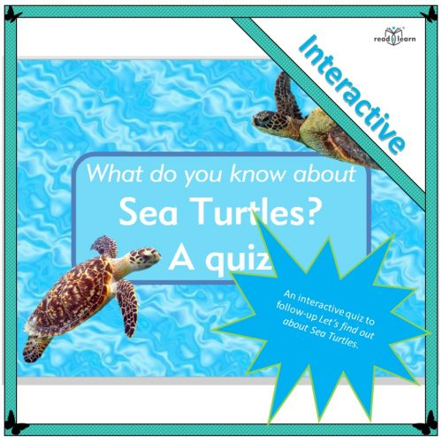 What do you know about Sea Turtles? A quiz