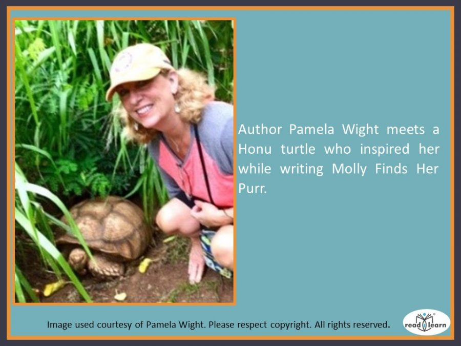Molly Finds her Purr by Pamela Wight