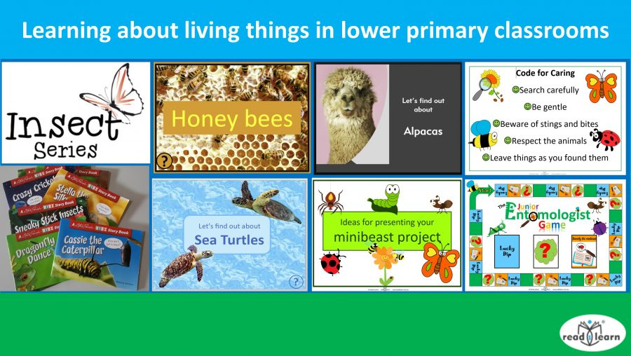 Learning about living things in lower primary classrooms nc