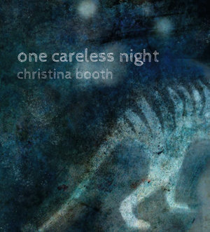 one-careless-night by Christina Booth
